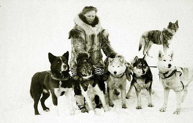 Leonhard Seppala og sine siberian huskies.