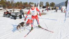 John Einar Solhaug fra Asker Trekkhundklubb var førstemann ut i Seppalaløypa.