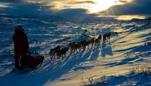 Forholdene i høgfjellet minner om det du ser på dette bildet. (Foto: Ola Husom)